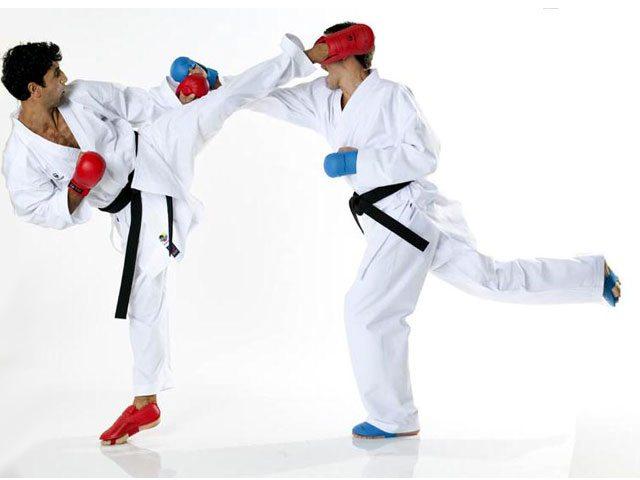 1e967ff4be9db776ed4d33f34ce291e5tokaido kumite master 2